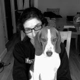 Downeast Dog News