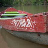 100% Amazonia Export. &  Rep. Ltda.