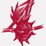 Profile for 津和堂