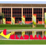 Profile for DON DINO NORTE