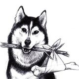 Adopt A Husky, Inc.
