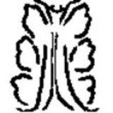 Profile for Acanthus Press LLC