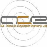 Profile for ACE Ltda