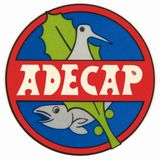 Profile for adecap