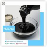Profile for +62 813-2666-1515 | Agen Vitamin Ternak Pleci