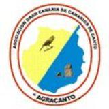Profile for RITO PEREZ