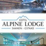 Profile for Hotel Alpine Lodge