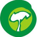Profile for Amigos da Terra Brasil