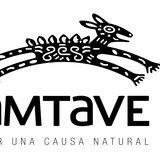 Profile for AMTAVE Asociación Mexicana de Turismo de Aventura y Ecoturismo