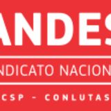 Profile for ANDES-SN