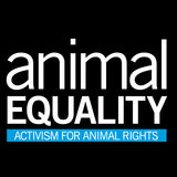 Profile for Animal Equality