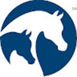 Profile for Arabian Horse Association