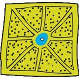 Profile for simpozionul ARTA IN GRADINA