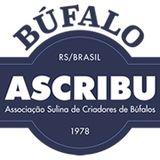 Profile for Ascribu
