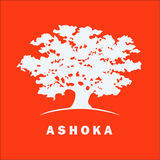 Profile for Ashoka Changemakers