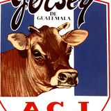 Profile for Asociación de Criadores de Ganado Jersey de Guatemala