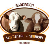 Profile for Asosimmental-Simbrah Colombia