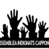 Profile for Assemblea Indignats Cappont