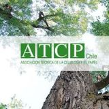 Profile for atcpchile