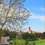 Profile for Ayuntamiento de Villamanrique de la Condesa