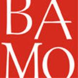 Profile for BAMO Inc
