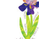 Profile for Budding Iris Publications
