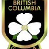 Profile for BCGSA