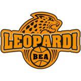 Profile for BEA Leopardi