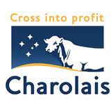 Profile for Charolais Society of Australia