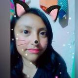 Profile for bine244
