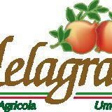 Profile for Biobauernhof Melagrani