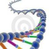 Profile for Biologia Interactiva