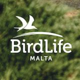 Profile for BirdLife Malta