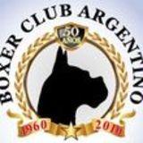 Profile for Boxer Club Argentino