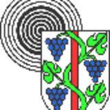 Profile for Thomas Schalch