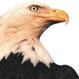 Profile for Burnett County Sentinel