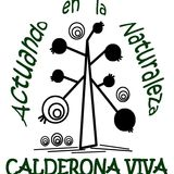 Profile for Calderona Viva