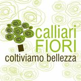 Profile for Calliari Fiori
