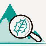 Profile for Caminos Y Ciencia