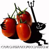 Profile for CARLO FIUMANO'