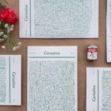 Profile for Carnation Zine