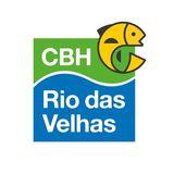Profile for CBH Rio das Velhas
