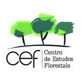 Profile for CEFLisboa