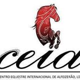 Profile for CEIA