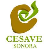 Profile for CESAVE Sonora