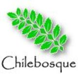 Profile for Chilebosque