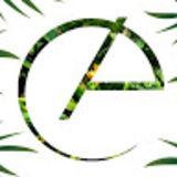 Profile for clara arruda