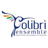 Profile for Colibrì Ensemble