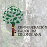 Profile for Confederacion Cauchera Colombiana