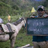 Profile for Conservamos por Naturaleza